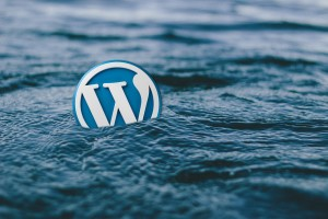 wordpress-588494_1280
